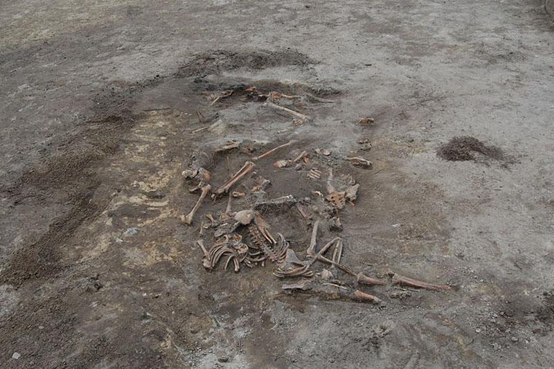 Массовое захоронение убитых поляков, обнаруженное на месте бывшей школы в селе Островецкая Воля