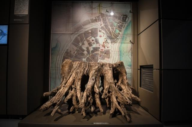 Музей археологии дерева в Свияжске.