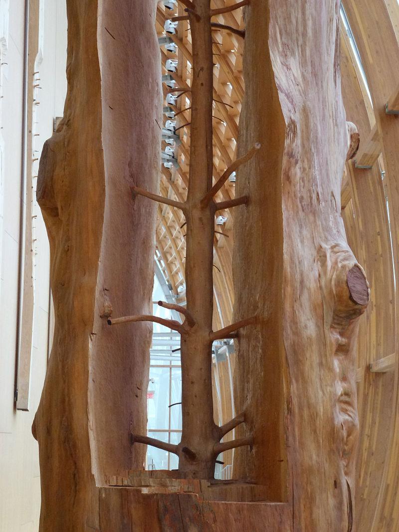Джузеппе Пеноне. Скульптура Скрытая жизнь внутри