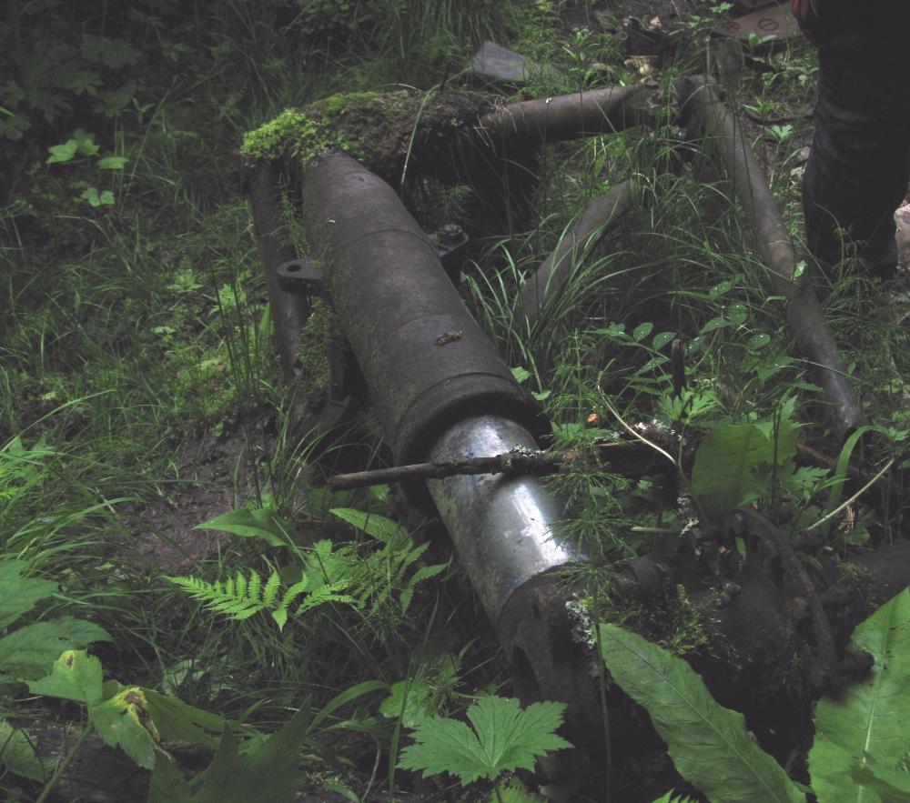 Стойка самолета, упавшего в годы войны в тайге