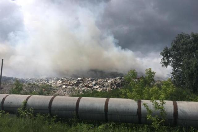 Нам повезло: ветер уносил запах мусора в другую сторону.