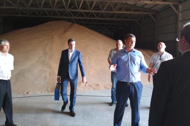 В зернохранилище лежит зерно, приготовленное для помола.