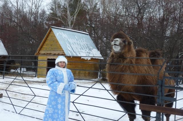 Снегурочка осматривает свои владения.