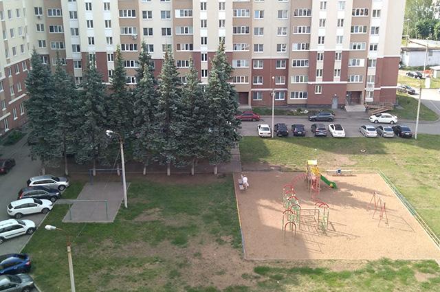 Ели, посаженные в 50-х годах, двор перед домом Горького, 56