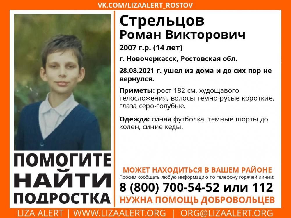 Пропал Роман Стрельцов