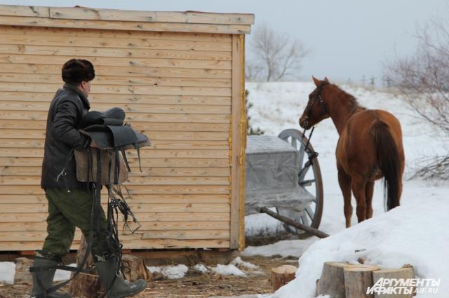 Жеребца по имени Гвоздик готовят к пробежке по снежной степи