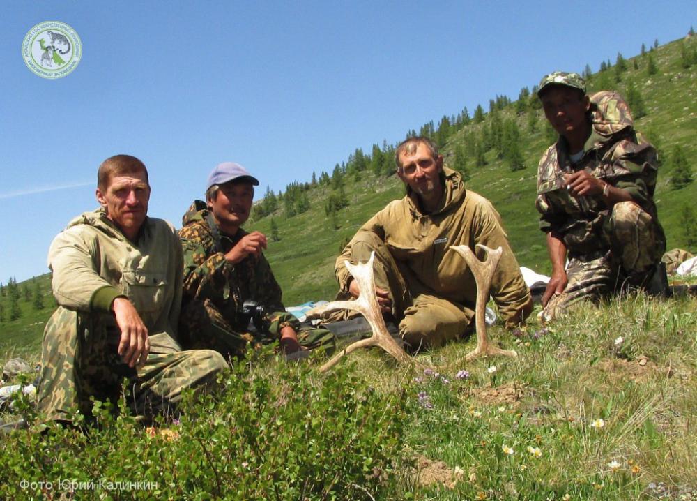 Встреча сотрудников заповедников «Алтайский» и «Убсунурская котловина» в ходе летних полевых работ по исследованию мест обитания лесного северного оленя. 2015 год.