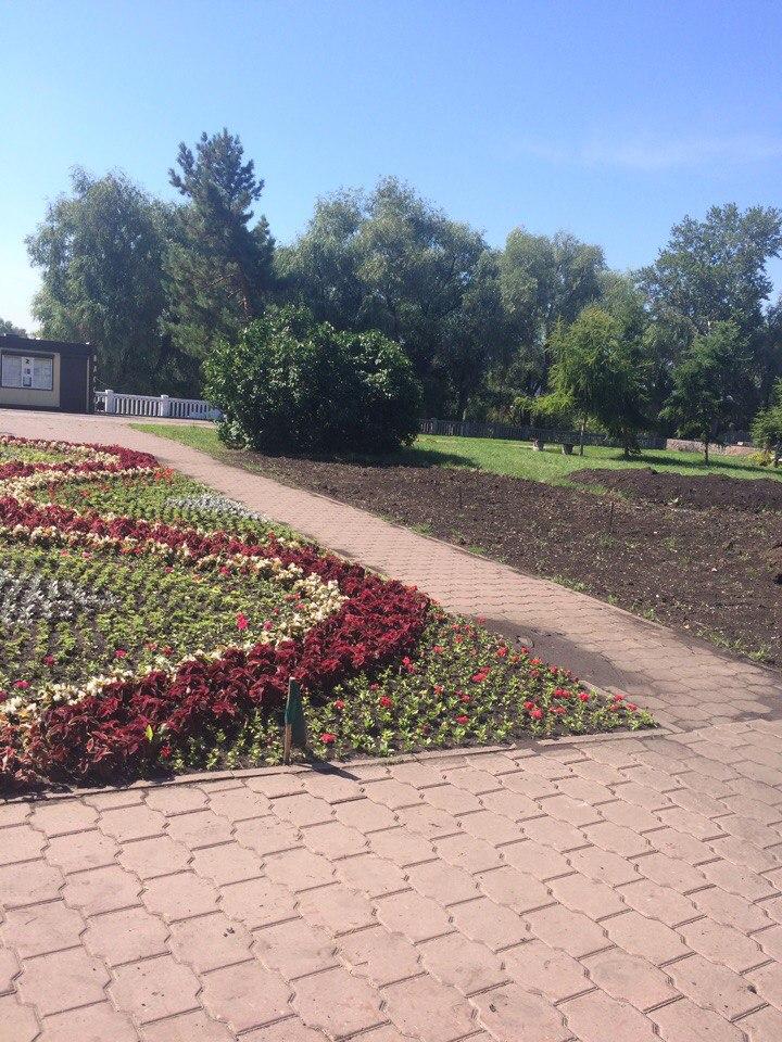 В Воскресенском сквере часть цветов уже высадили.
