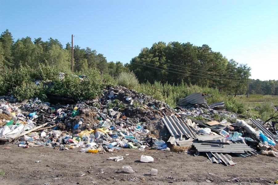 Стихийную свалку в Завьялово под Новосибирском устроили местные и туристы, мусор летит в соседнее озеро.