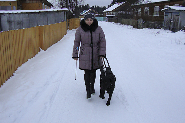 Хозяину и собаке долго приходится привыкать друг к другу: даже темп жизни у них может различаться.