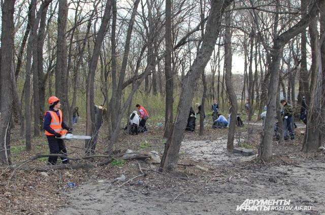 На помощь добровольцам прибыли работники ЖКХ.