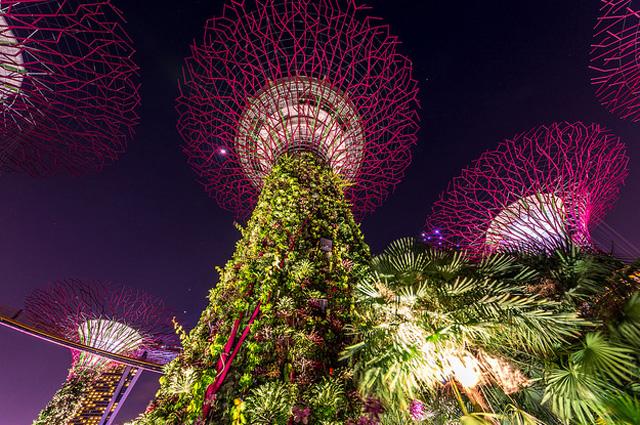 «Искусственные» достопримечательности - сад с гигантскими электрическими деревьями.