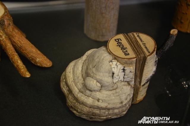 Посетителей выставки удивляют книжки, изготовленные из дерева.