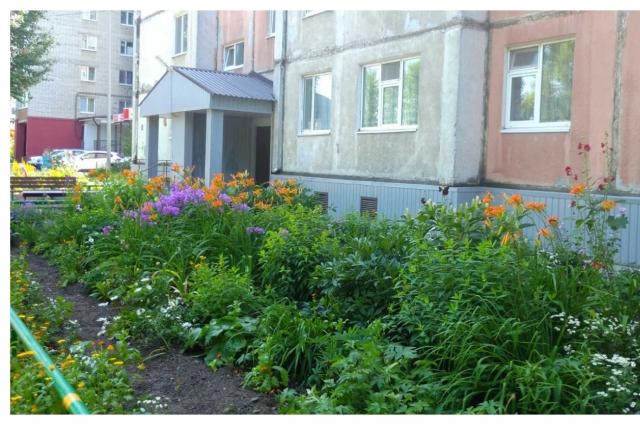 Жители и сами заботятся о внешнем виде двора.
