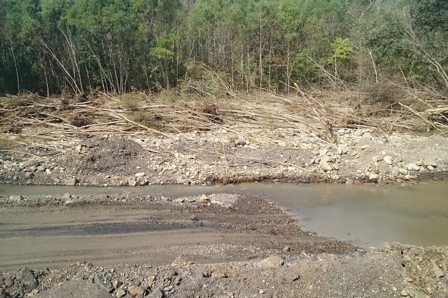 Буйство погоды оставило целый лесоповал прямо в реке.