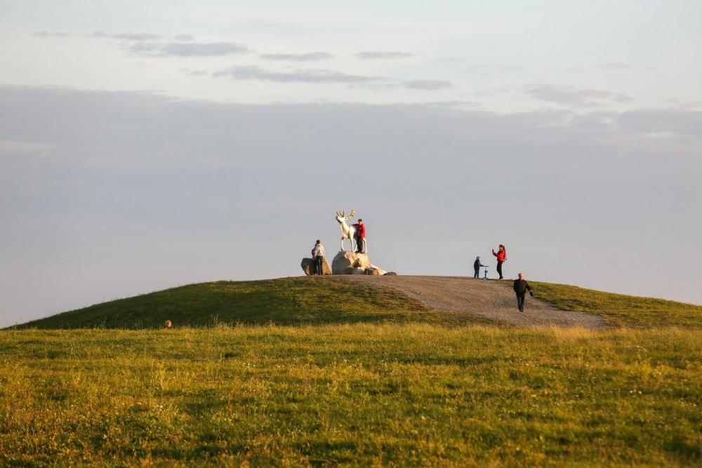 Прямо в  центре Академического формируется  Преображенский парк, он станет одним из крупнейших в  Екатеринбурге.