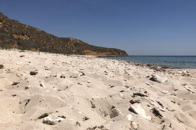 Дикий пляж.