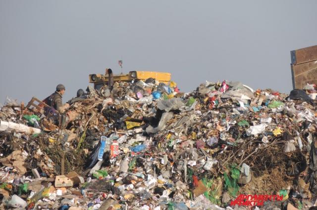 В России чаще всего мусор просто закапывают в землю