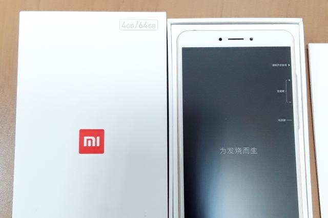 Китайские телефоны контрабандист хотел продать в Калининграде.