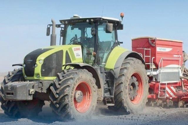 В этом году на полях появятся новые сорта картофеля и пшеницы.