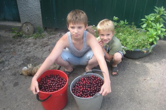 Ваня Воронов с братом Тимофеем