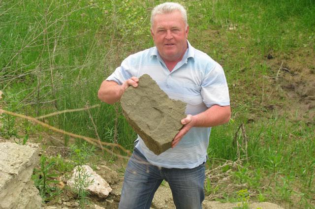 Эти камни обеспечивают корням растения уникальный микроклимат.