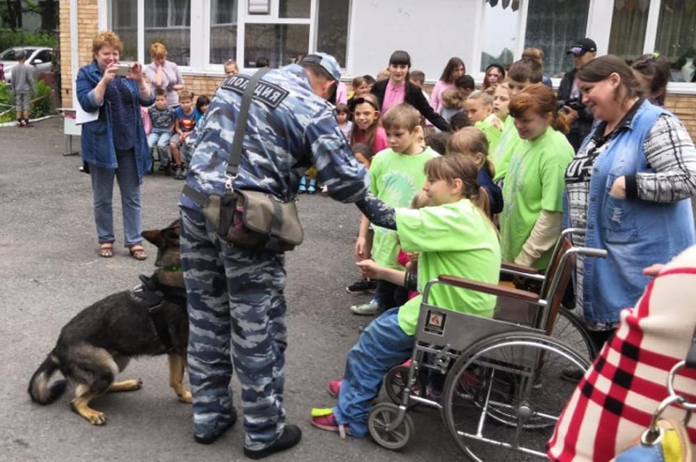 Смотри, и собака - волонтёр!