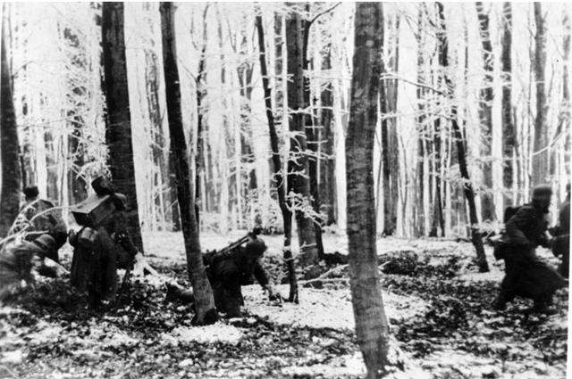 Январь 1945 года Бой в Арденнских лесах
