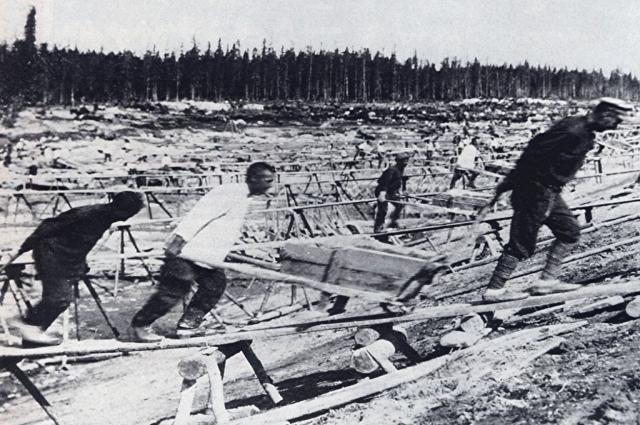 Те, кому повезло выжить, оказалис в лагерях