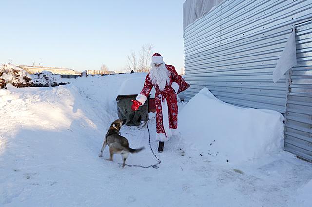 Собака встречает Деда Мороза перед домом.