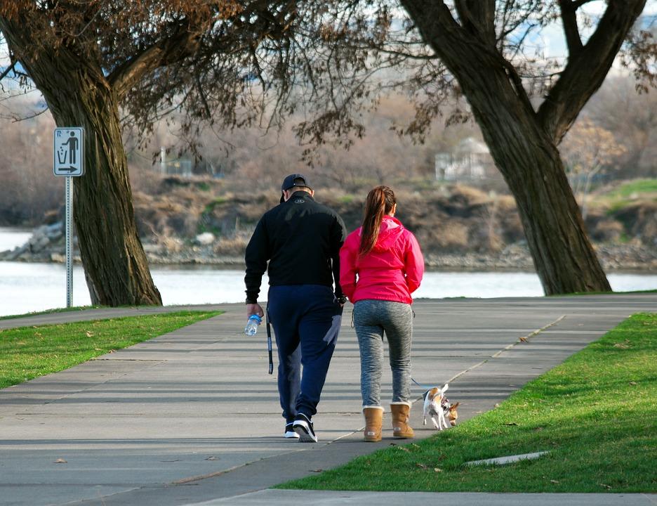 За выгул собак в неположенном месте могут оштрафовать. Правда, положенных мест в городе очень мало.