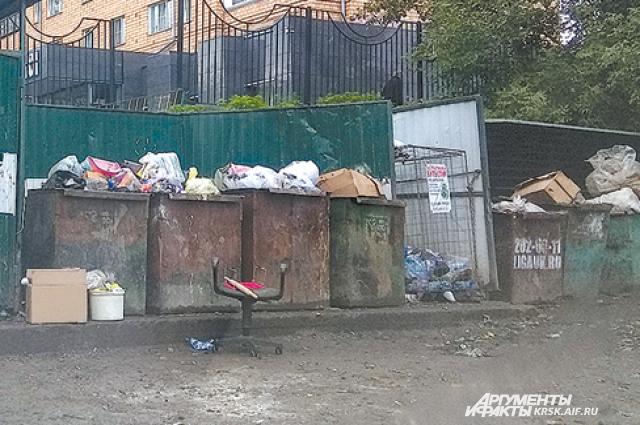 Красноярцы пока не готовы к сортировке мусора.