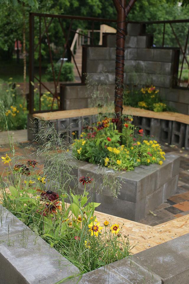 «Вторая жизнь»: растения «укрощают» железо и бетон.