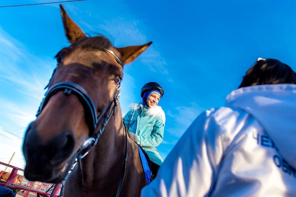 В детских занятиях участвуют лошади, которых специально подготовили к этому.