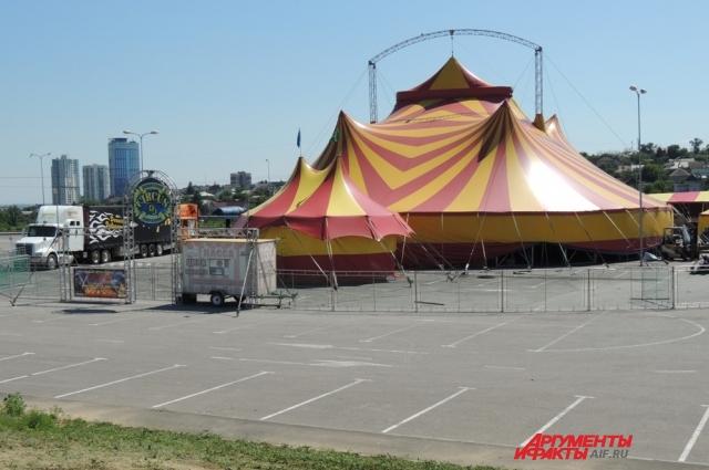 Грома отдали в цирк-шапито.