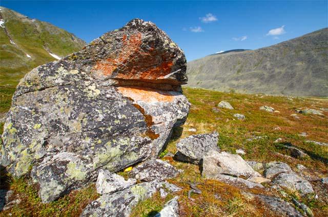 в границы которого без проведения соответствующей экологической экспертизы в 1994 году были включены земли промышленности вместе с расположенными в недрах и стоящими на балансе Минприроды запасами рудного золота Кожимского горнорудного кластера.