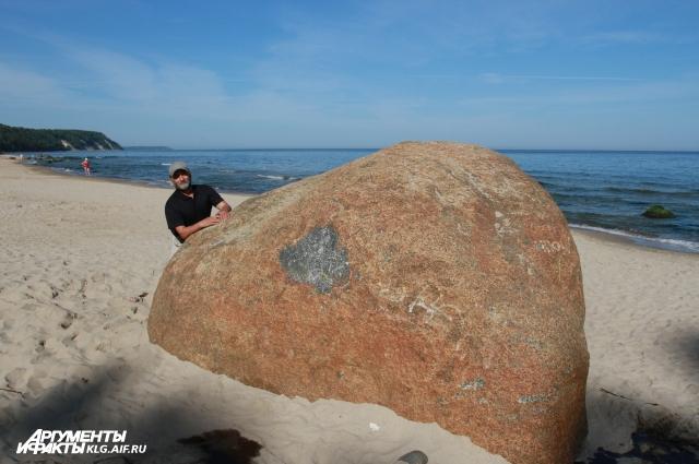 Берег Балтийского моря.
