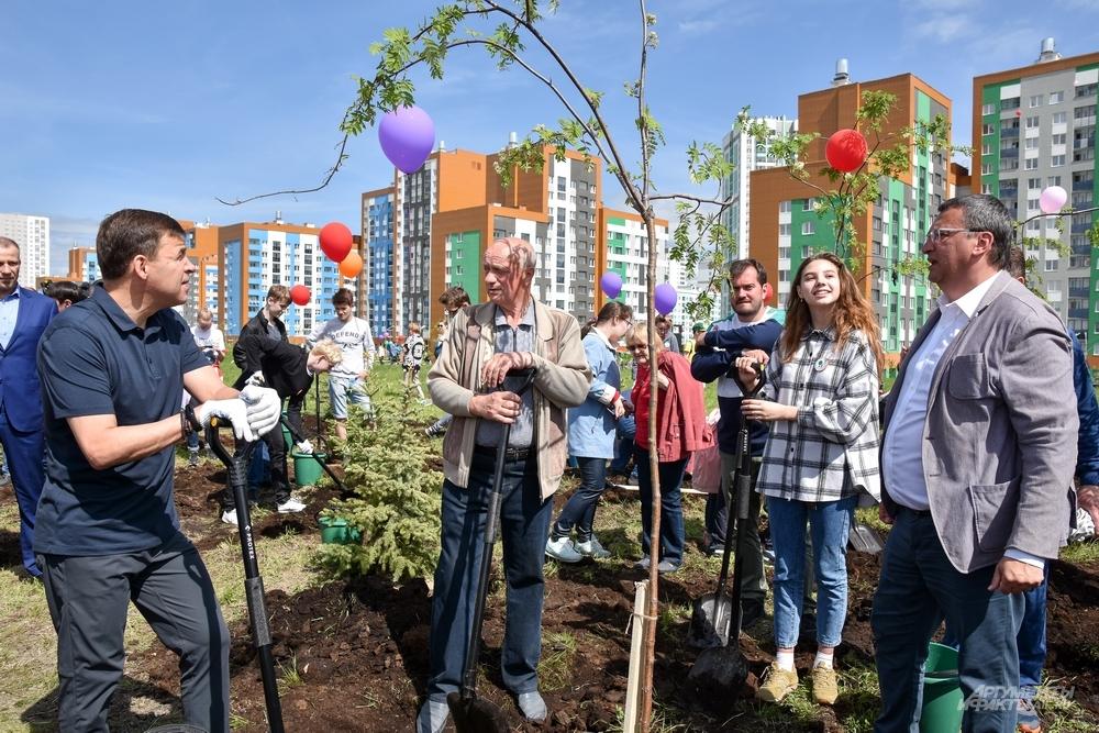 Первые 500 деревьев Преображенского парка посадили в День защиты детей.