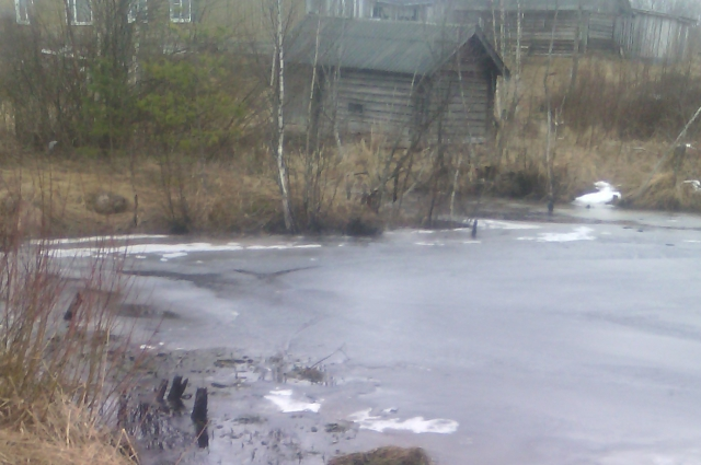 Из этого болотца воду и черпают