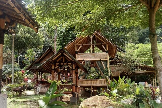 Дом в тропических лесах.