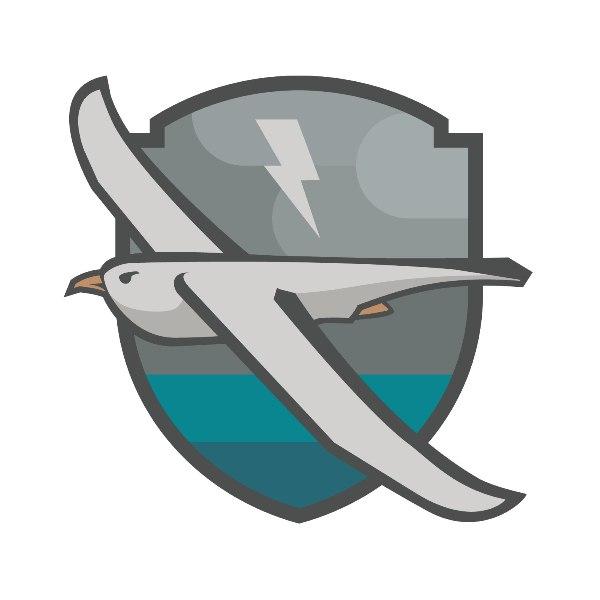 Логотип команды «Буревестники Горького»